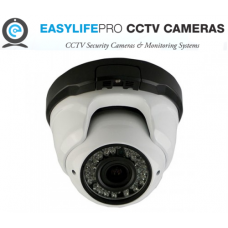 EASYLIFE PRO Wireless Indoor Outdoor Dome Camera